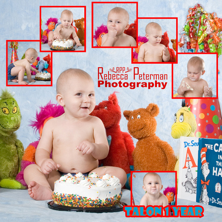 Cake Smash 1 year old picture