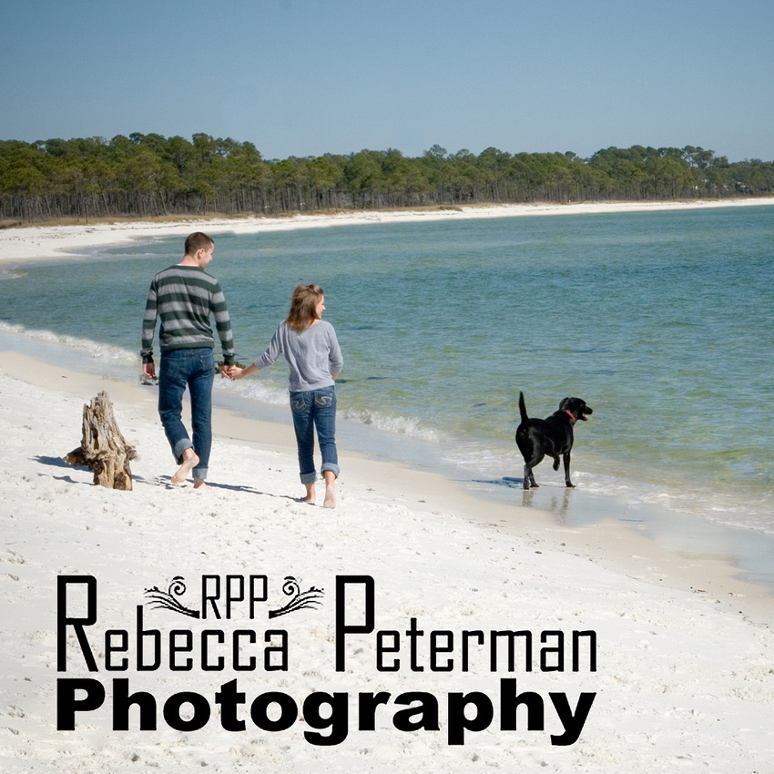 Couple and dog on beach
